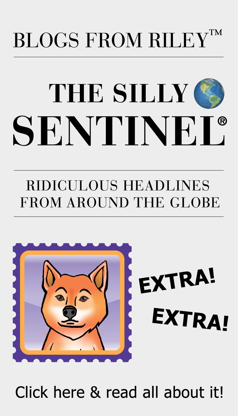 Blogs From Riley - The Silly Sentinel
